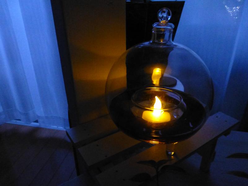 夜のガラスの捕虫器