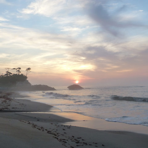 夏の海。夜明けの海。